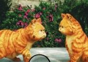 เกมส์แมวกาฟิวส์หาตัวเลข