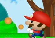 เกมส์มาริโอผจญภัยในป่า