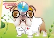 เกมส์โรงพยายาลรักษาสัตว์