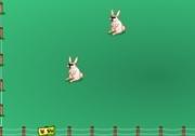 เกมส์รักษาชีวิตกระต่าย