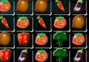 เกมส์จับคู่พืชผักสวนครัว