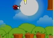 เกมส์เต่าทองบินผจญภัย