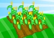 เกมส์ปลูกฟาร์มพืชผล