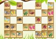 เกมส์จับคู่อาณาจักรแมลง