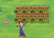 เกมส์สาวออฟฟิศปลูกผัก